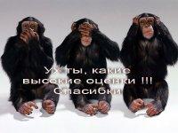 Alex Bublek, 9 сентября , Санкт-Петербург, id62487447